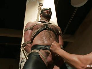 unshaved guy acquires handjob in bondage