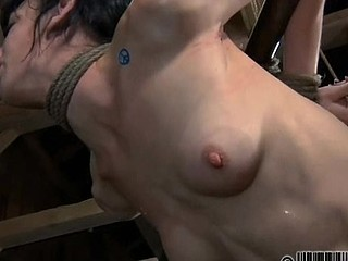 Punishment for playgirl's nipples