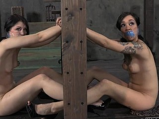 Sexy babe with tied up mouth got her screwed from behind
