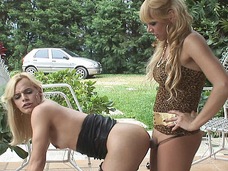 Walquiria&Thais gorgeous t-girls on movie scene